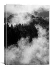 Emerging from the Fog, Canvas Print