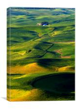 Patterns of the Palouse, Canvas Print