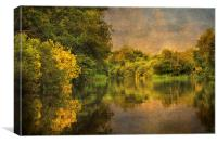 River Ant, Norfolk Broads, Canvas Print