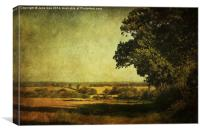 Along The Field, Canvas Print