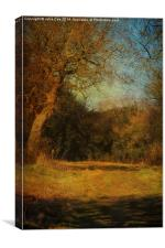 Walking The Countryside, Canvas Print