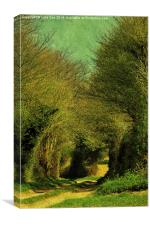 Green Lane, Canvas Print