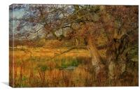 Tree In A Meadow, Canvas Print