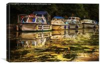 Boats on the Broads 7, Canvas Print