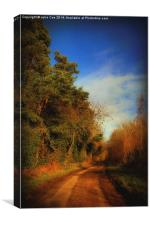 Pond Hills Road 7, Canvas Print