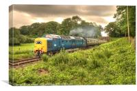 Deltic in Somerset, Canvas Print