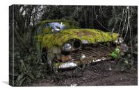 A (non) rolling car gathers some moss, Canvas Print