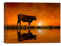 Into the Sunset, Canvas Print