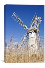 Thurne Mill through the reeds, Canvas Print