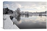 Winter on Coltishall Common, Canvas Print