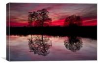 Tree Reflection at Sunset on Norfolk Broads, Canvas Print