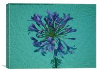 The Floating Flower of Love, Canvas Print