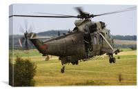 Royal Marines Sea King, Canvas Print