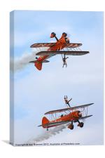 Breitling Wingwalkers display, Canvas Print