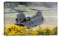 Chinook Landing in dust 2, Canvas Print