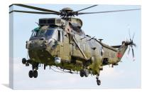 Commando Sea King, Canvas Print