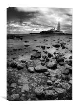 St Marys Lighthouse and Rocks, Canvas Print