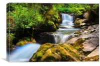 Swiss rapids., Canvas Print