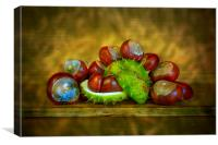Conker Season, Canvas Print