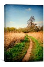 The Reed Beds, Canvas Print