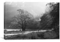 Sunrise and mist, Langdale Valley, Lake District, Canvas Print