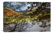 Autumnal trees and view to farmhouse on the shore , Canvas Print