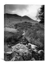 Cinnerdale Beck above Crummock Water with Whiteles, Canvas Print