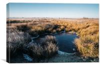 Frozen water and reeds lit by the sunrise. Beeley , Canvas Print