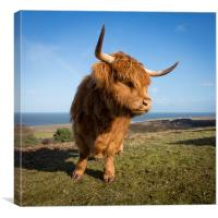 HIghland Girl, Canvas Print