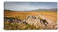 old drystone wall, Canvas Print