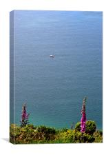 Fishing in Lynmouth Bay , Canvas Print