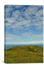 On Foreland Point , Canvas Print