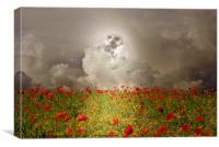Poppies By Moonlight, Canvas Print