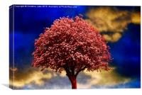 Tree In Red, Canvas Print