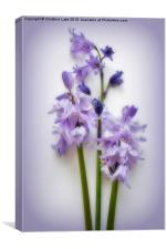 Magic Moments in Blue , Canvas Print