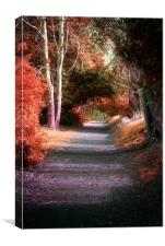 Autumns Solitude, Canvas Print