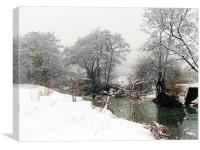 Winter and Summer Fused,Wales., Canvas Print