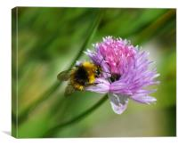 Bee Chive, Canvas Print