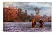 Grazing side by side, Canvas Print