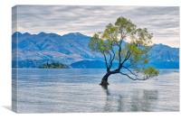 That Wanaka tree, Canvas Print