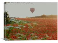Poppies and balloons, Canvas Print