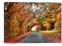 Autumn in Oxfordshire 2, Canvas Print