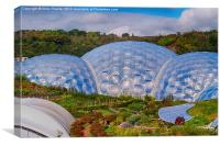 Eden Project Biomes, Canvas Print