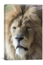 Lion Portrait Watercolour, Canvas Print