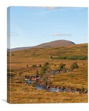 Rannoch Moor stream, Canvas Print