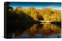 Burnham Beeches, Canvas Print