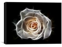 Rose of Light, Canvas Print