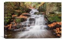 Lovely Lumsdale, Canvas Print