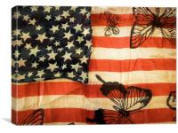 stars, stripes and butterflies, Canvas Print