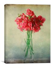 vintage sweet peas, Canvas Print